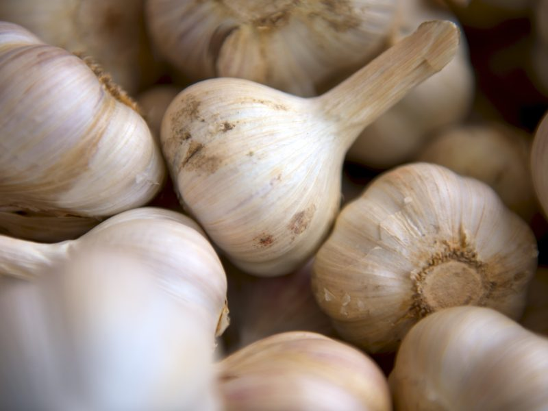 5 reasons to lick your garlic
