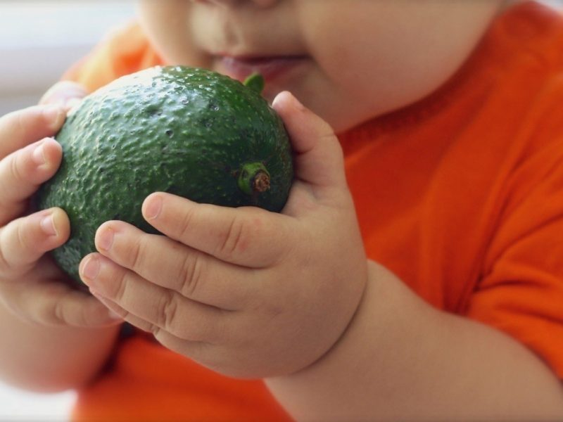 Baby bites: Kids will love these 3 Singapore organic stores