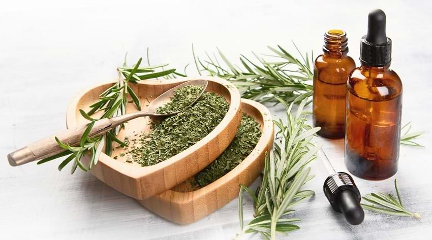 How To Improve Memory Using Rosemary